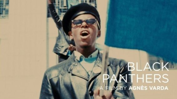 primary_BlackPanthers